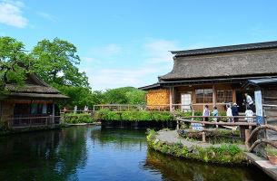 日本关东一地?东京、镰仓、富士山6日游半自由行