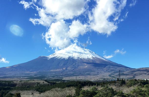【赏秋泡汤】日本本州东京、京都、奈良、富士山6日游(阪东)