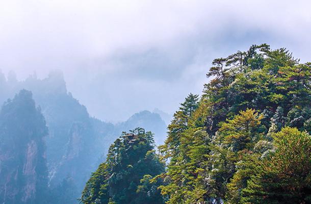 张家界森林公园、天门山、玻璃桥、凤凰古城双飞五日游(0自费0购物)