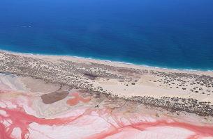 西澳大利亚粉红湖纯玩慢行9日游