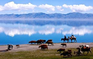 【纵贯南北疆】新疆-天池-可可托海-喀纳斯-禾木-伊宁-库尔勒-吐鲁番双飞12日游