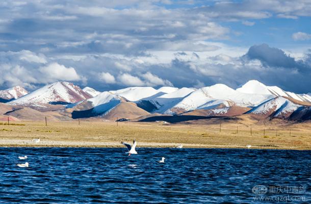 【彩】拉萨、羊湖/纳木措去卧回飞6日游