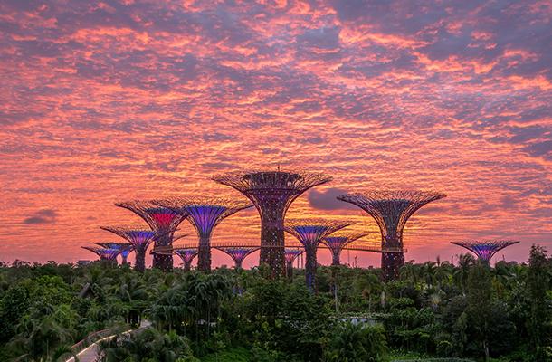 【0自費0購物】新加坡半自由行雙飛6天5晚游(2人成行)