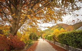 国外这些秋季美如画的景点推荐,值得前来打卡!
