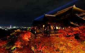 又见枫叶红,2019年日本赏红叶最佳地点及赏枫时间。