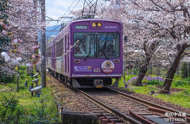 【賞櫻泡湯】日本本州、京都、奈良、富士山、東京雙飛6日游(阪東)
